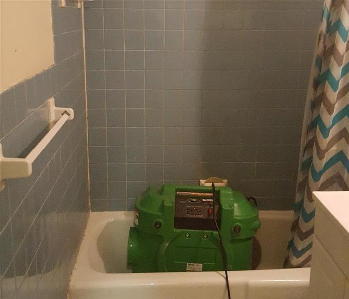 Mold Remediation Mold Remediation in Bathroom